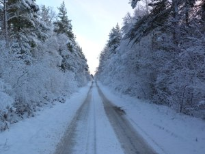 Picture of snow-covered road